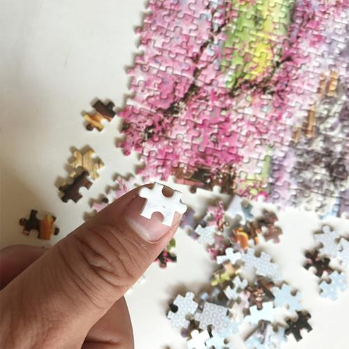 Puzzles Aurora Micro Jigsaw Adult Kid Assembling 1000Pieces